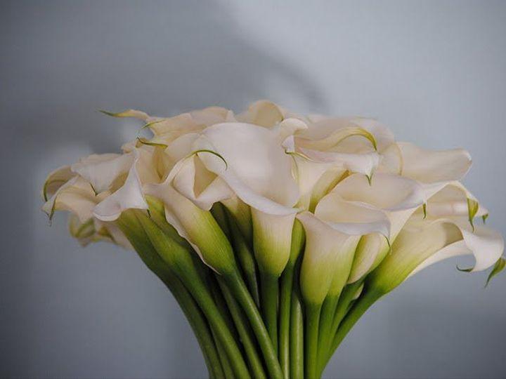 Tmx 1355850932309 2158501771316290053915128764n Millerton wedding florist