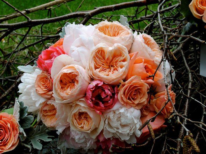 Tmx 1355850955257 2400451840658383119705194088o Millerton wedding florist