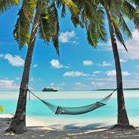 caribbean unknown hammock i 1