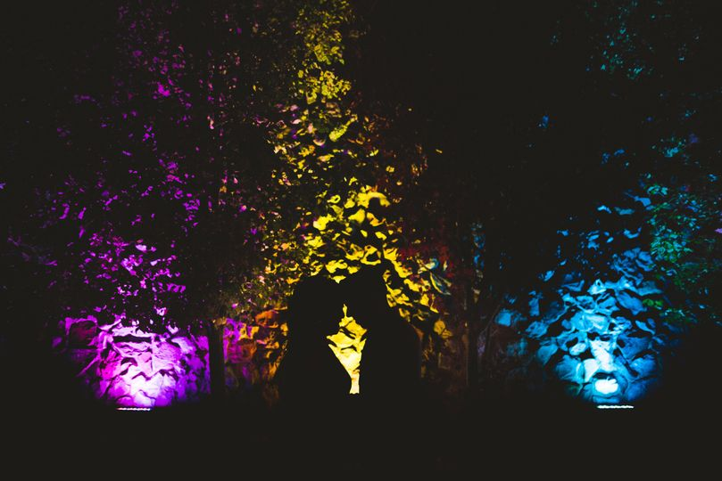 Silhouettes and lights