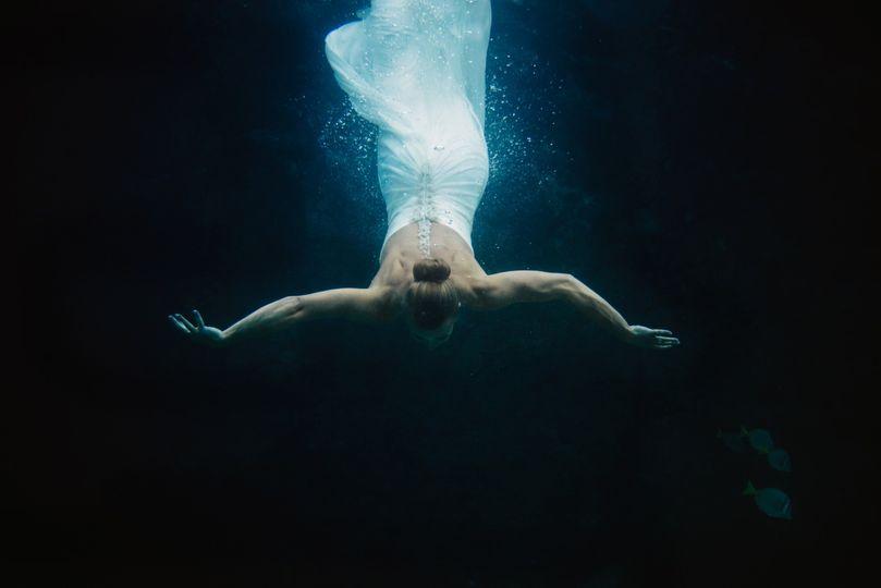underwater ccphotoloscabos carloshernandez 1 51 745805 158077521088365