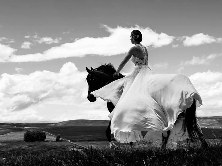 Tmx 1537830416 1b52e79a42aed5d9 1537830415 Fefb709ac88602fe 1537830414396 6 42173462 226510347 Bozeman, Montana wedding photography