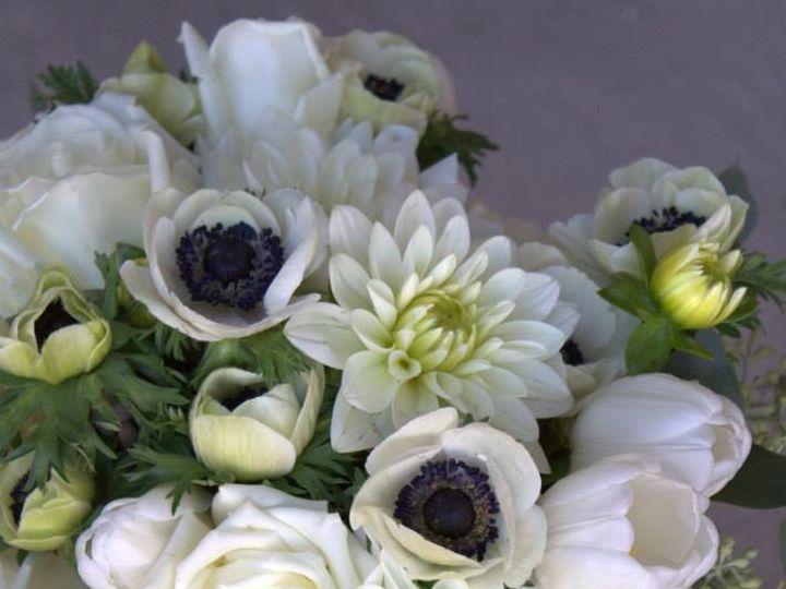 Tmx 1436477631621 106035787897062277181452789326324412869440n Kansas City wedding florist