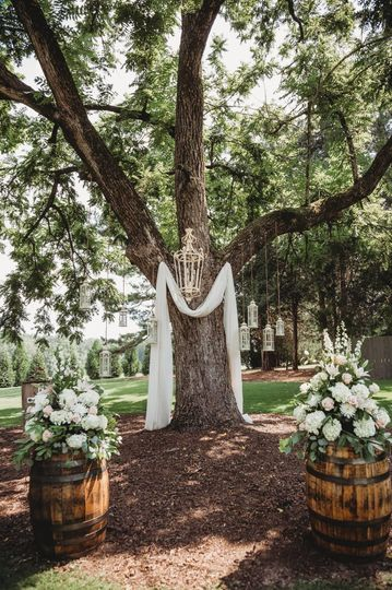 Walnut Tree Decor