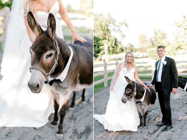 Tmx 42094397 2008257279213866 8975986125378158592 N 51 3905 New York, New York wedding dress