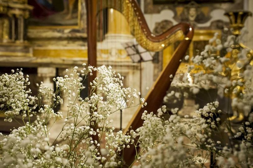 Flowers by the harp