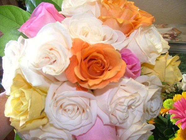 flowers706037