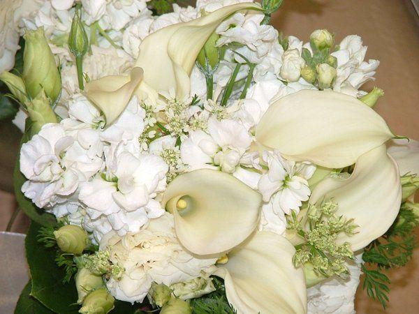 flowers706004