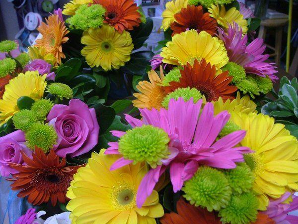 flowers706028