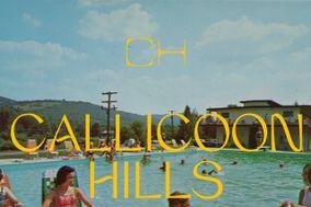 Callicoon Hills