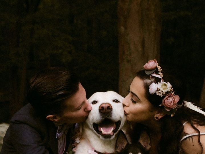Tmx Natashashapiro Rangefinder30 021 51 1014015 1567187778 Rhinebeck wedding photography