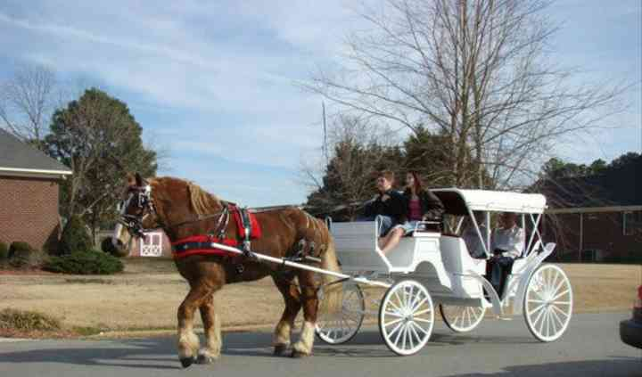 Dixie Carriages