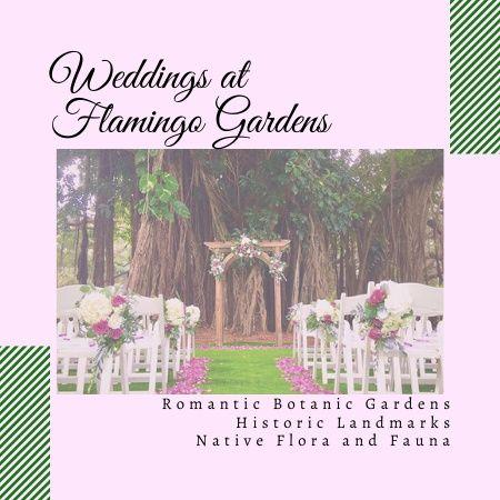 Weddings at Flamingo Gardens