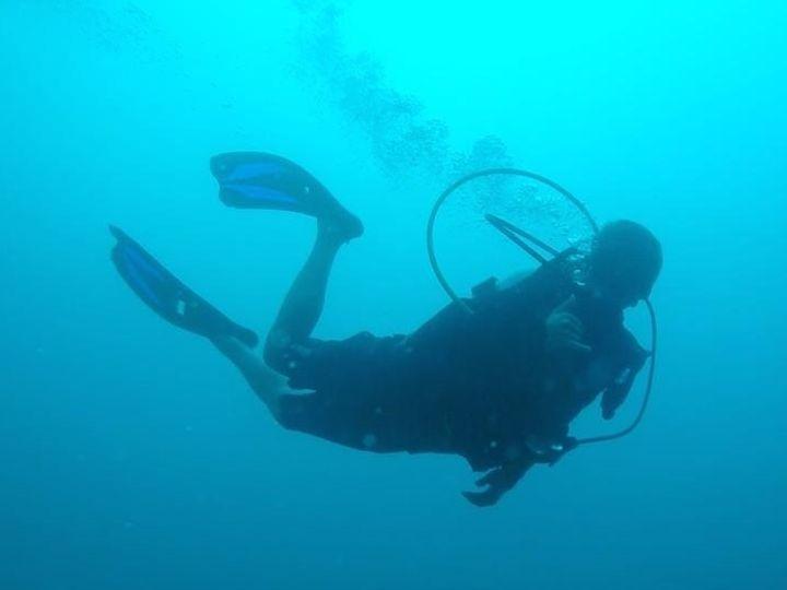 Tmx Diving 51 1968015 158851355239019 Fort Lauderdale, FL wedding travel