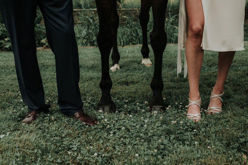 Bride, groom, horse