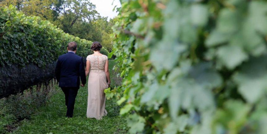wallpaper vineyard