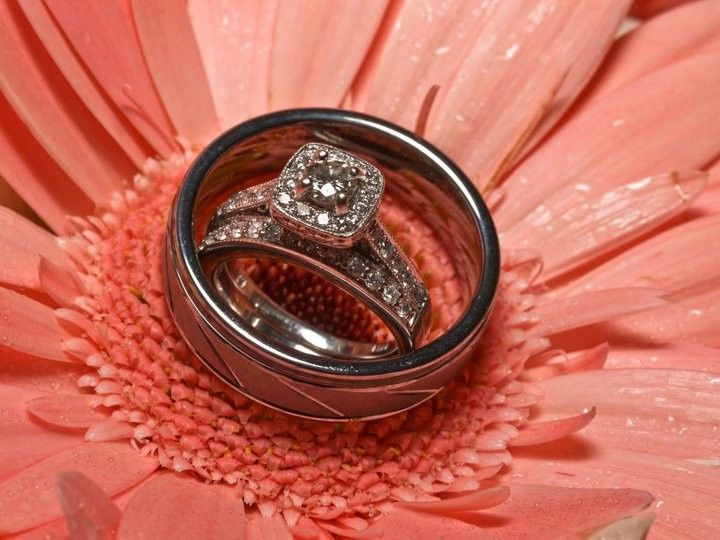 Tmx 1475342675923 Gerber Daisy Wedding Rings Brunswick, Maine wedding planner