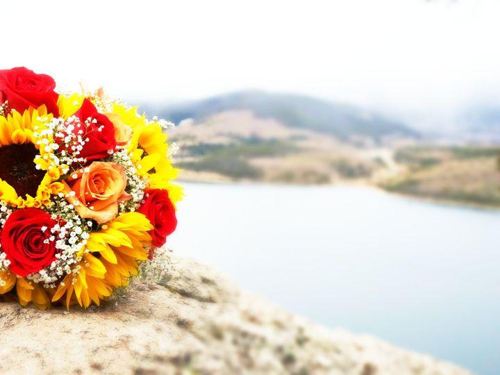 Tmx Dsc00890 51 1027115 Littleton, CO wedding planner