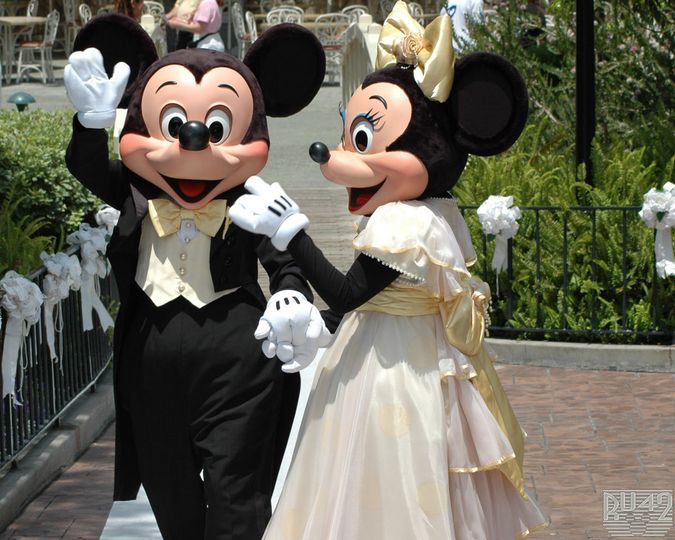 wedding at disneyland and Mickie and Minnie showed up
