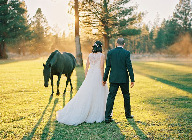 800x800 1478670259229 bride and groom  horse
