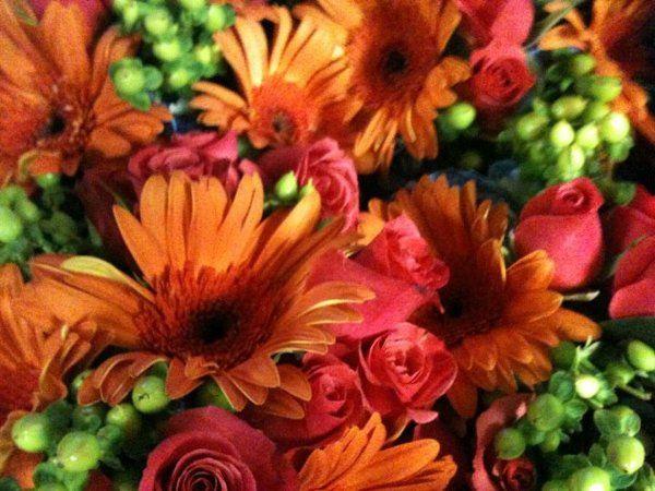 abbey rose floral artistry flowers charlotte nc weddingwire. Black Bedroom Furniture Sets. Home Design Ideas