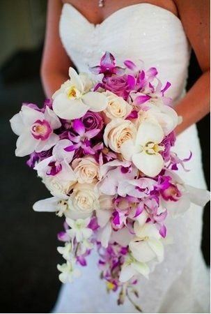 Tmx 1352312042836 594 Boynton Beach wedding florist