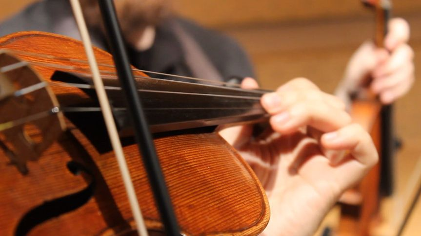 Closeup of violin in concert