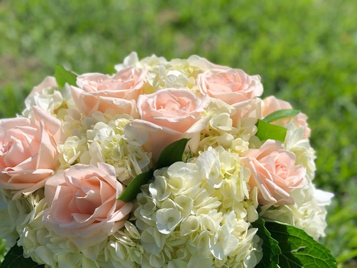 Tmx Img 2595 51 664315 1570731913 Boca Raton, FL wedding florist
