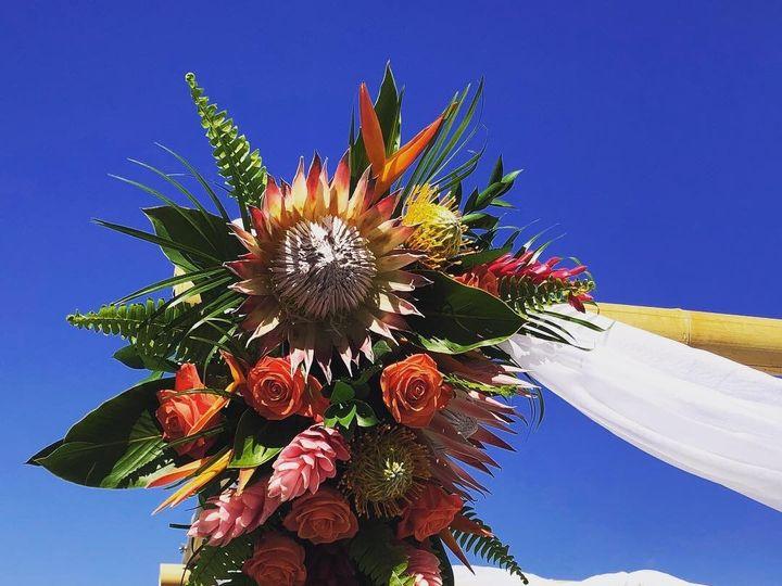 Tmx Img 2767 51 664315 1570731700 Boca Raton, FL wedding florist
