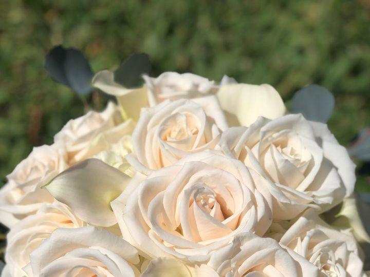 Tmx Img 3551 51 664315 160330633391331 Boca Raton, FL wedding florist
