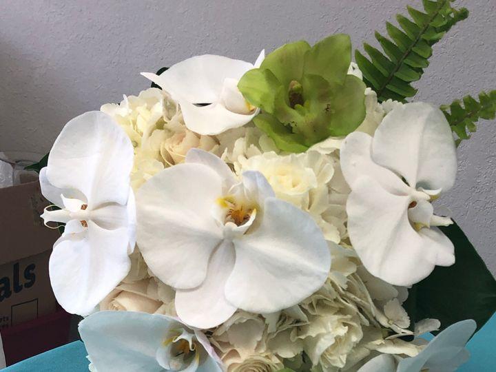 Tmx Img 5593 51 664315 1570731772 Boca Raton, FL wedding florist
