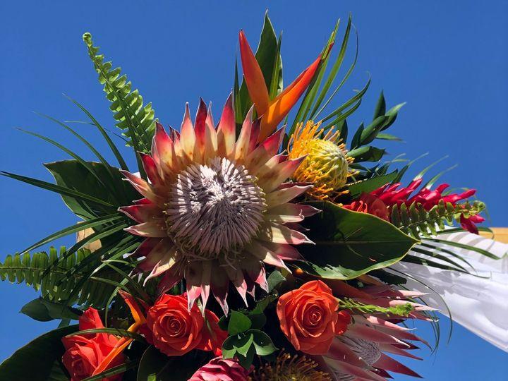 Tmx Img 5766 51 664315 160330650071484 Boca Raton, FL wedding florist