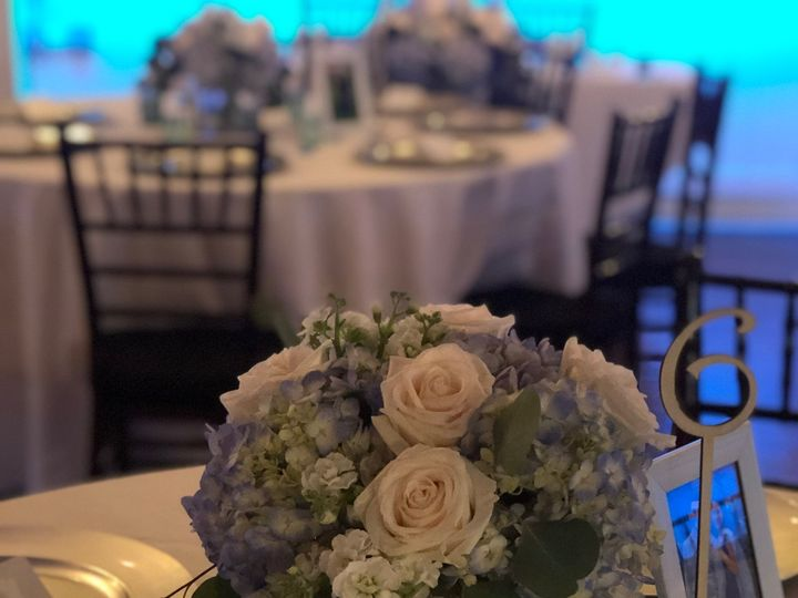 Tmx Img 8273 51 664315 160330645337662 Boca Raton, FL wedding florist