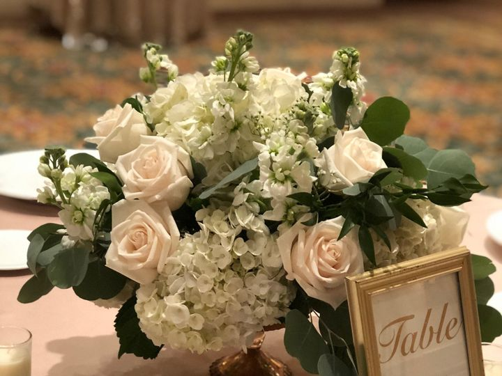 Tmx Img E2521 51 664315 160330652565533 Boca Raton, FL wedding florist