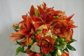 Deloache Flowers