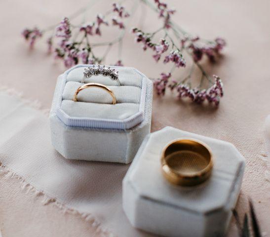 Tmx Blaktammyphotography 10 51 1917315 160348213212635 Mount Dora, FL wedding photography