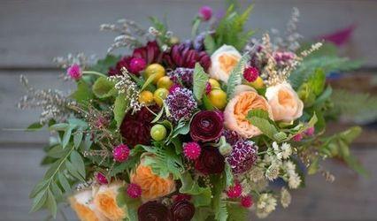 Nutmeg Flowers