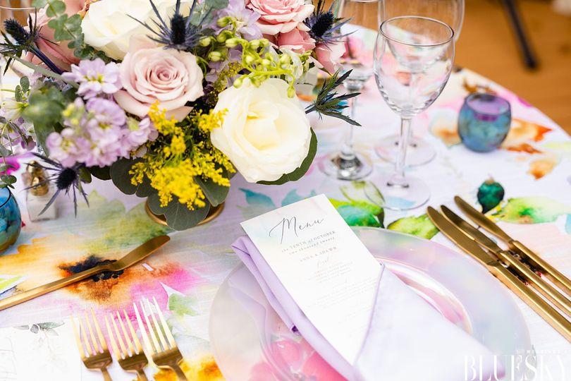 weddings by bluesky anna and shawn 51 1986415 161262798544951