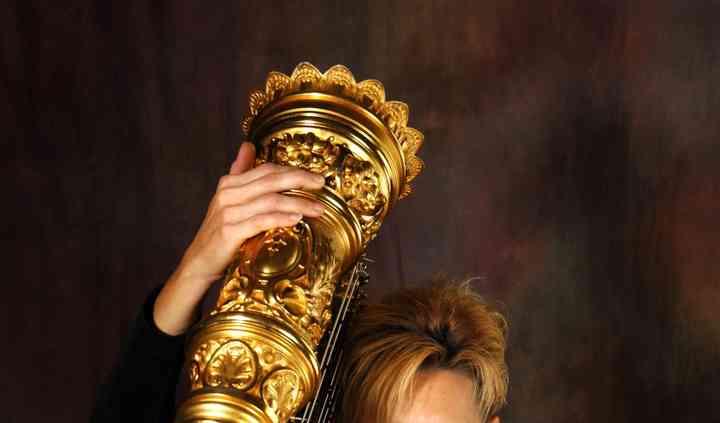 Kansas City Harpist- Wesley Kelly