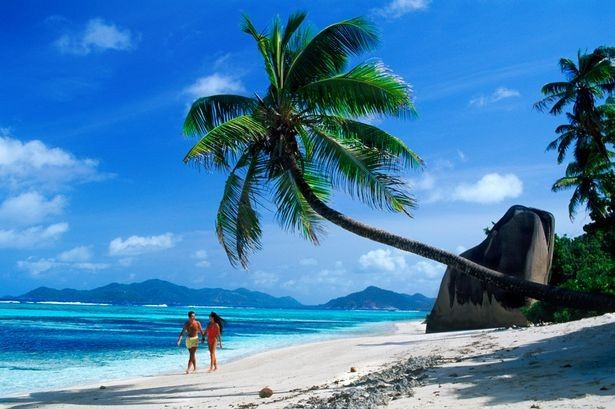 Tmx 1391819370317 A Couple Walking Along A Beach 114023 McMinnville, OR wedding travel