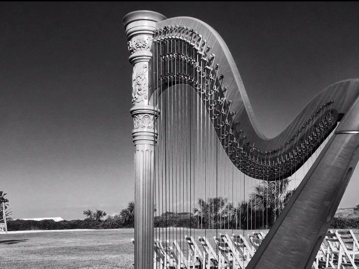 Tmx 1496097505955 Wedding Harp Washington, DC wedding ceremonymusic