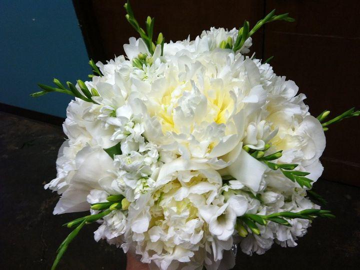 Tmx 1349802593719 IMG0482 Houston, Texas wedding florist