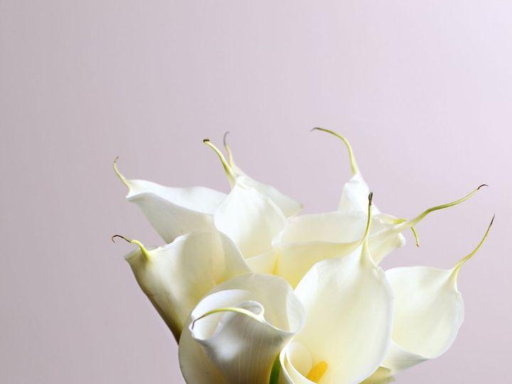 Tmx 1349976095898 Img0046 Houston, Texas wedding florist