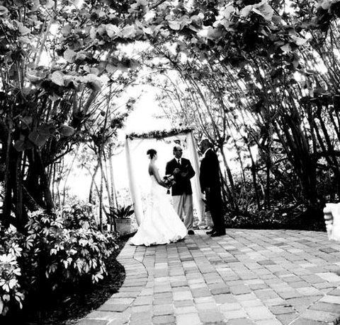 Tmx 1322755527914 ButterflyGarden Fort Myers Beach wedding venue