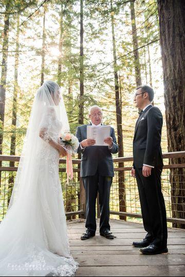 Redwood Observation Deck, Forest Park, Kara Cooper Photography