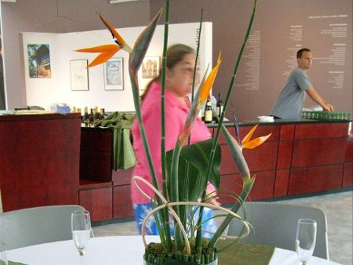 Tmx 1246707720800 ALIM0428 New Smyrna Beach, Florida wedding florist