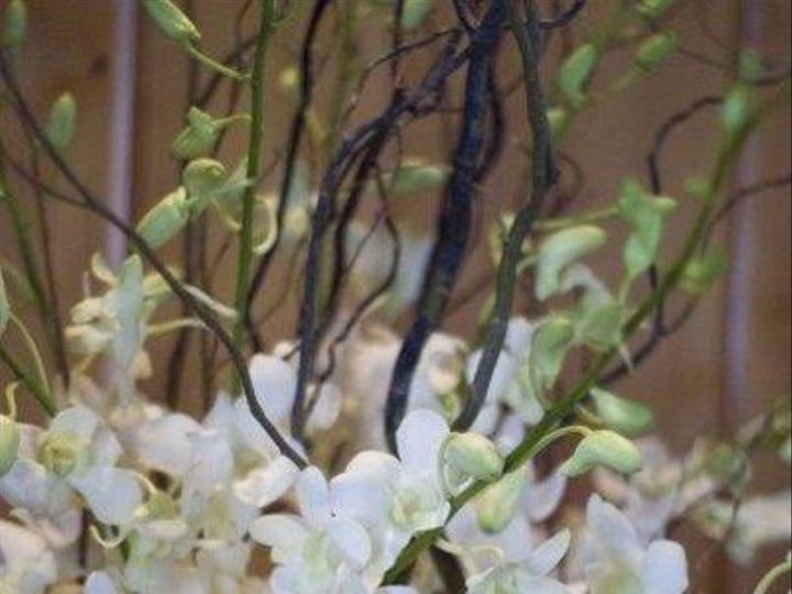 Tmx 1246708006816 Spieringwedding14 New Smyrna Beach, Florida wedding florist