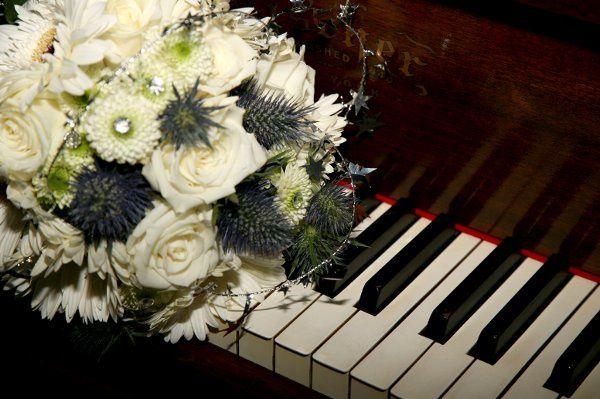 Tmx 1256737475977 APS00316 New Smyrna Beach, Florida wedding florist