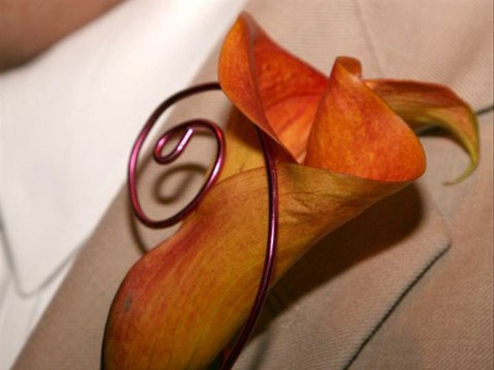 Tmx 1256744871133 APS00488 New Smyrna Beach, Florida wedding florist