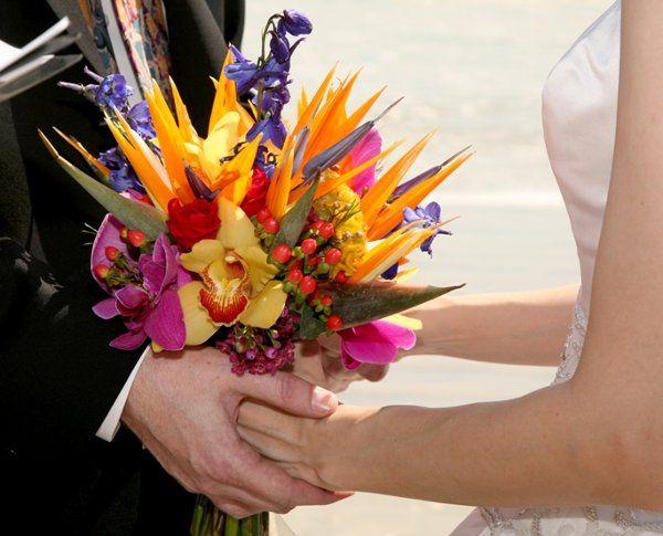 Tmx 1256744894383 APS00133 New Smyrna Beach, Florida wedding florist
